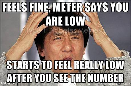 Meter Says Low! | www.iamatype1diabetic.com
