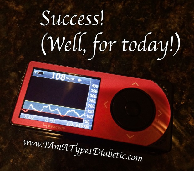 Successful Day as a Type 1 Diabetic | www.IAmAType1Diabetic.com