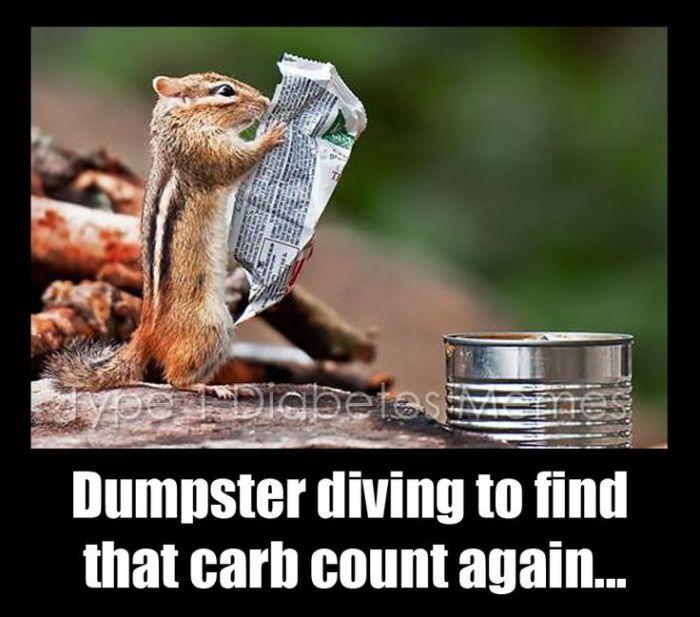 Dumpster Dive | www.IAmAType1Diabetic.com